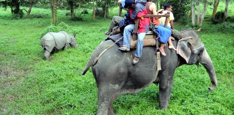 Chitwan Safari Package Tour – 2 nights 3 days